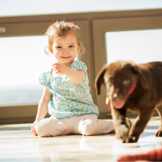 Keeping Your Floors Kid and Pet Friendly